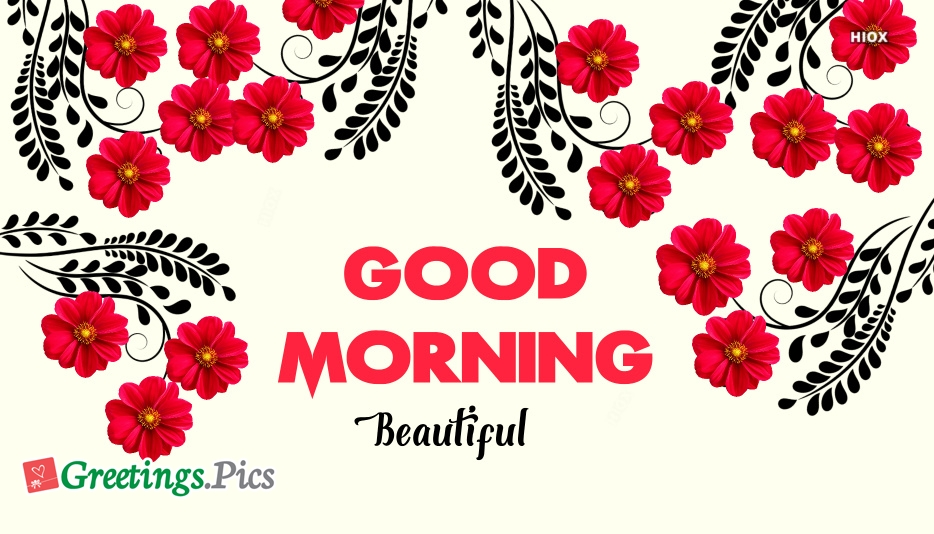 Good Morning Beautiful With Flowers