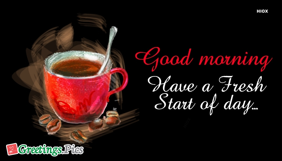 Good Morning. Have A Fresh Start Of Day