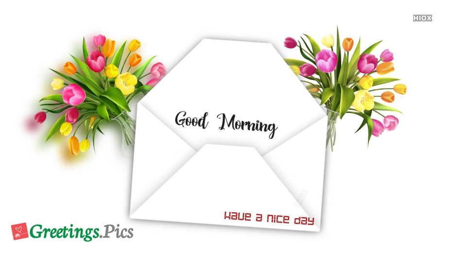 Have a Nice Day Greeting Cards For Facebook, Whatsapp