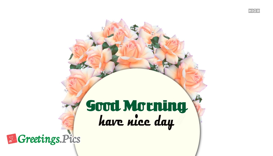 Good Morning Flowers Greetings, Images