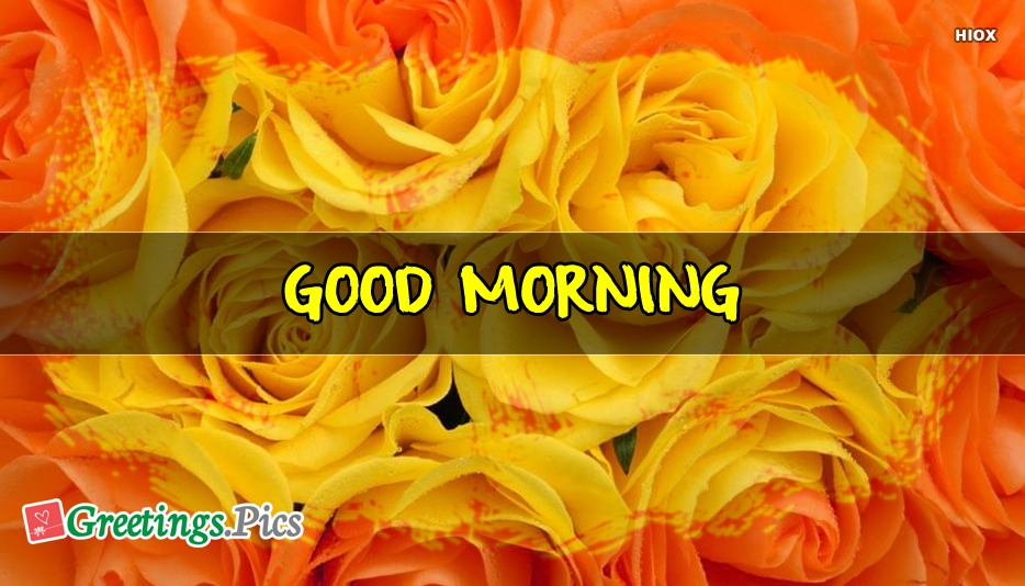 Good Morning Yellow Flowers