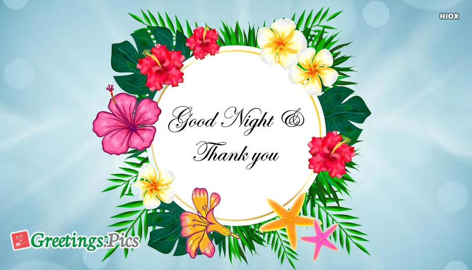 Good Night And Thank You