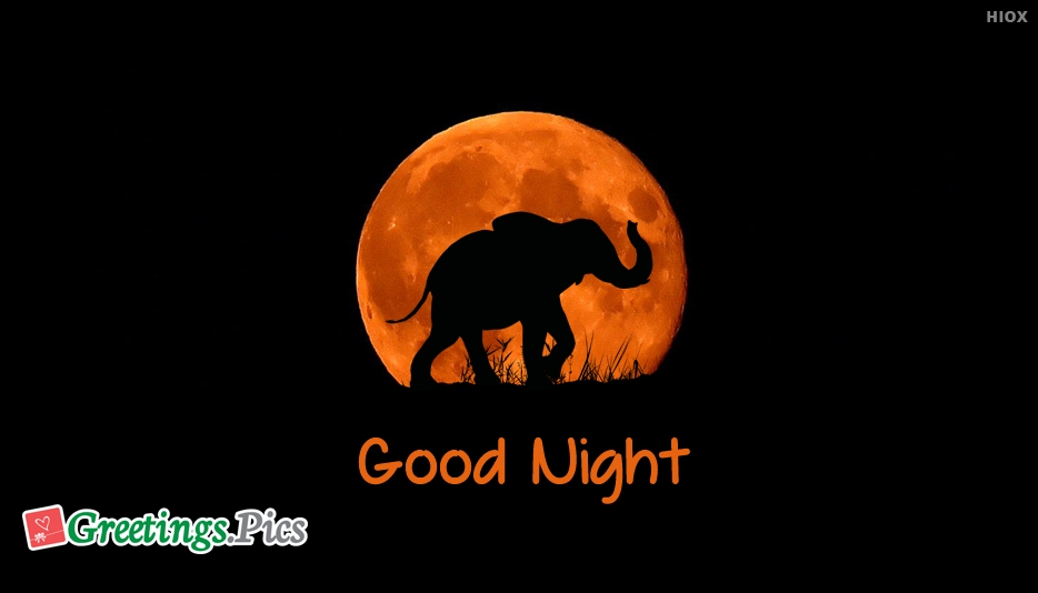 Good Night Greetings