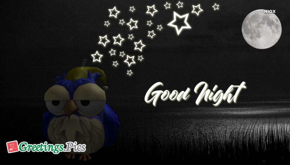 Good Night With Owl