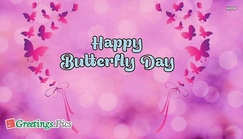 Happy Butterfly Day