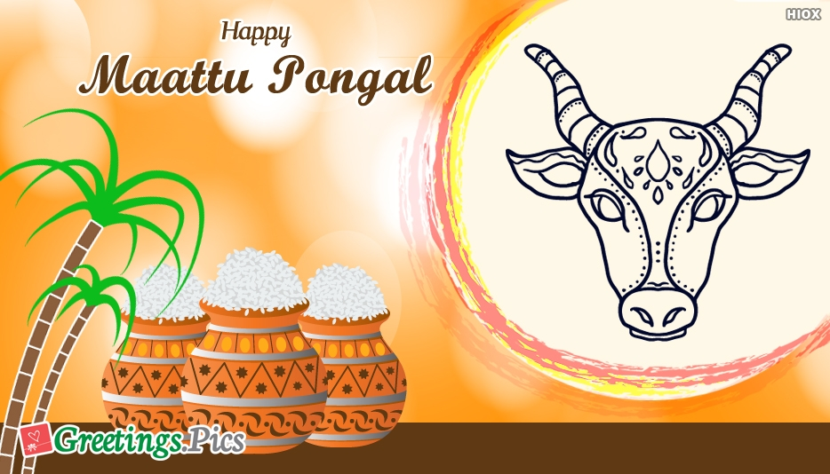 Happy Maattu Pongal Wishes Wallpaper