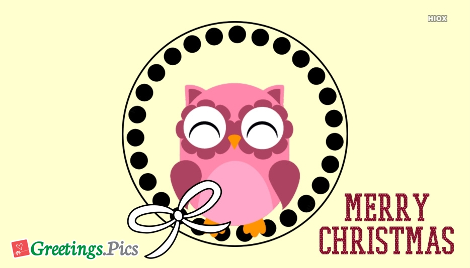 Merry Christmas With Owl