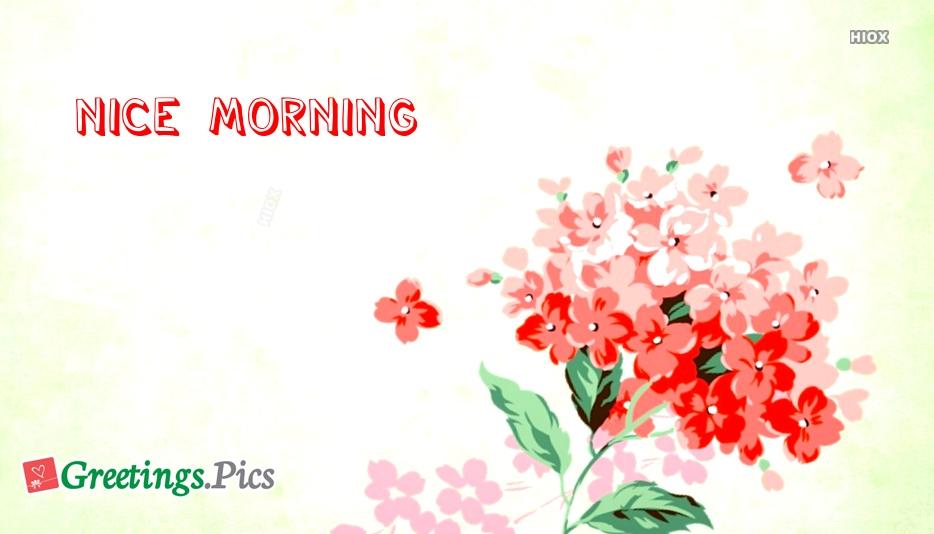 Nice morning greetings greetings nice morning greetings m4hsunfo