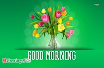 Good Morning Beautiful Pics