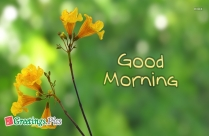 Good Morning Greetings With Images