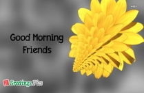 Good Morning Greetings Card