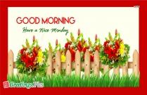 Good Morning Let
