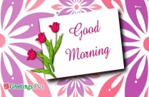 Good Morning Greetings With Pictures