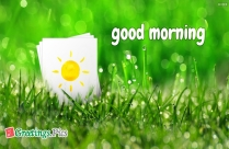 Good Morning Greetings