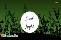 Good Night Green Background Image