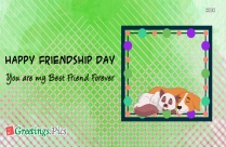 Happy Friendship Day Special