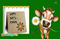 Happy Mattu Pongal Greeting
