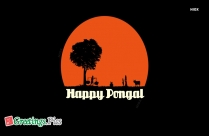 Happy Pongal Photos