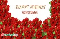 Happy Sunday Wishes Quotes