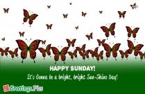 Happy Sunday Wishes Quotes