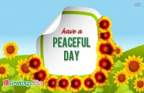 Have A Peaceful Day