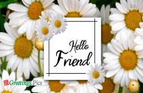 Friends Greeting Cards, Images, Quotes
