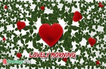 Good Morning New Photo