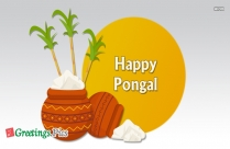 Happy Pongal Greetings Pictures